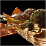 äpplehösten undersöker torra leafs för sammansättning som plundrar vasen Arkivbild
