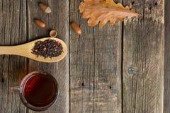 äpplehösten undersöker torra leafs för sammansättning som plundrar vasen Kopp te, höstsidor och ekollonhösttebjudning royaltyfria bilder