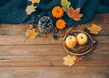 äpplehösten undersöker torra leafs för sammansättning som plundrar vasen Nya äpplen över träbakgrund Arkivfoto