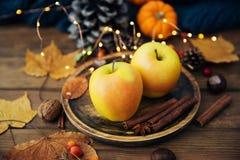 äpplehösten undersöker torra leafs för sammansättning som plundrar vasen nya äpplen royaltyfri foto