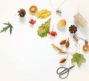 äpplehösten undersöker torra leafs för sammansättning som plundrar vasen Ram Fotografering för Bildbyråer