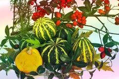 äpplehösten undersöker torra leafs för sammansättning som plundrar vasen Sammansättningen består av ett par av pumpor, viburnumen arkivfoton