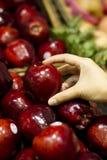 äpplehackared upp arkivfoton