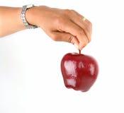 äppleholding Arkivbild