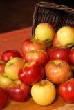 äpplekorg som ut faller Royaltyfri Foto