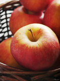 äpplekorgred Arkivbilder