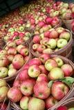 äpplemarknad Royaltyfri Bild