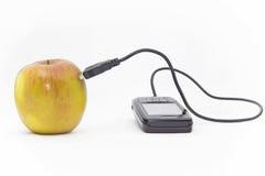 äpplenätverkande royaltyfri fotografi