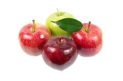 Äpplen. Royaltyfri Bild