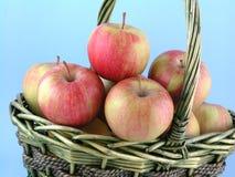 äpplen Arkivbilder