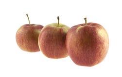 Äpplen Fotografering för Bildbyråer
