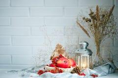 Äpplen, bär och höstsidor på en trätabell höstbakgrundscloseupen colors orange red för murgrönaleaf Royaltyfri Foto