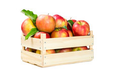 äpplen box trä Royaltyfria Bilder