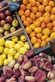 Äpplen, Clementines och persikor Arkivfoto