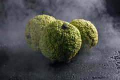 Äpplen för Adam ` s på en svart bakgrund i rök Äpplen för Adam ` s, som drakeägg som slås in i rök Arkivbild