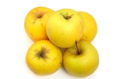äpplen fem Arkivbild