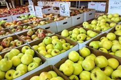 Äpplen från den till salu Apple skörden Royaltyfria Bilder