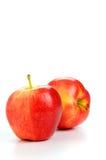 äpplen fuji Arkivfoto