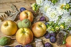 Äpplen gröna muttrar, fikonträd och med katrinplommoner en bukett av vita dahlior Arkivbild