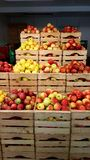 Äpplen i ask Arkivbild
