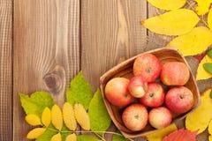 Äpplen i bunke och färgrika höstsidor på träbakgrund Royaltyfri Fotografi