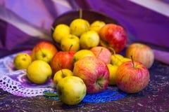 Äpplen i en bowl_2 Arkivbild