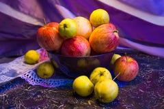 Äpplen i en bunke Royaltyfri Foto