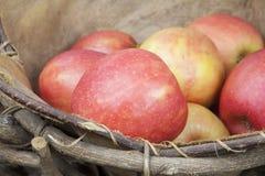 Äpplen i en lantlig korg Arkivfoto