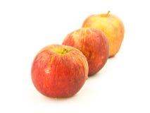 Äpplen i en ro Arkivfoton