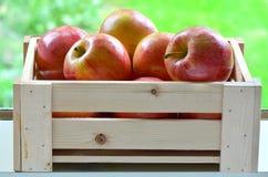 Äpplen i en spjällåda Royaltyfri Bild