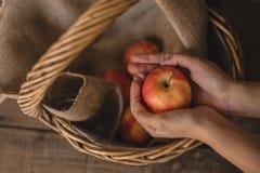 Äpplen i en vide- korg royaltyfria bilder