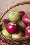 Äpplen i en vide- korg Fotografering för Bildbyråer