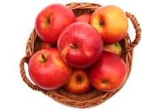 Äpplen i korg Royaltyfri Fotografi