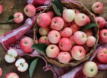 Äpplen i korgen, sikt från över Royaltyfri Bild