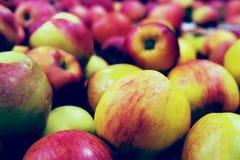 Äpplen i marknaden Arkivfoto