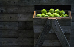 Äpplen i marknaden Royaltyfri Bild