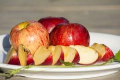 Äpplen i maträtten Royaltyfri Fotografi