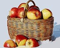 Äpplen i snön Arkivfoton