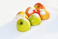 Äpplen i snön Arkivbild