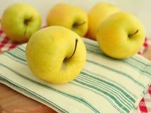 Äpplen i sommar Royaltyfria Bilder