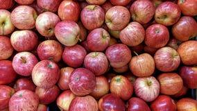 Äpplen i stora partier royaltyfri fotografi