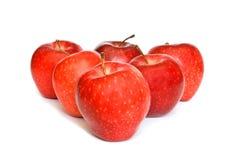 äpplen isolerade röd white Arkivbild