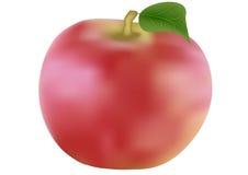 äpplen isolerade röd white Royaltyfri Fotografi