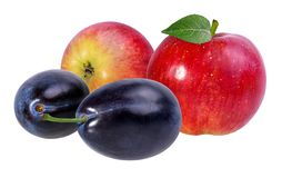 äpplen isolerade vita plommoner Arkivbild