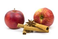Äpplen, kanelbruna pinnar och anis Royaltyfri Fotografi