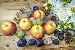 Äpplen, katrinplommoner, fikonträd och gräsplanmuttrar med en bukett av vita dahlior Royaltyfri Foto