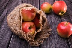 Äpplen med säckvävsäcken Arkivfoto