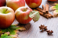 Äpplen med sidor, kanelbruna pinnar, stjärnaanis och hösttjänstledigheter Arkivfoto