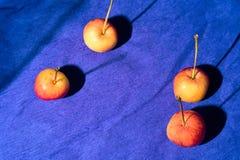 Äpplen med skuggor på ett blått papper Royaltyfri Bild