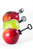 Äpplen med tangenter Arkivfoton
